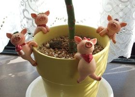 豚の鉢植え飾り